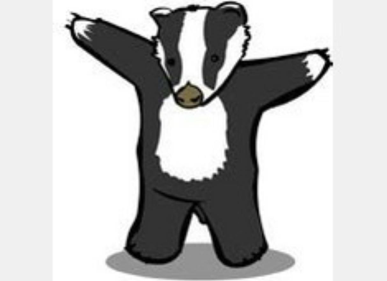 Baboon v badger